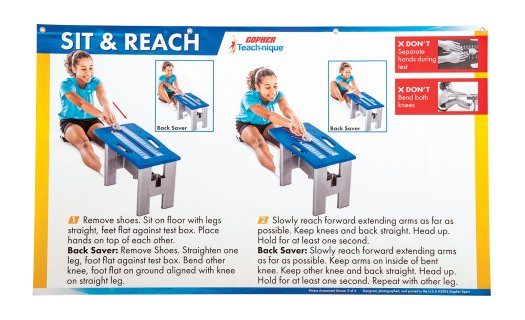 g-49260-vinyl-sit-reach-fitness-assessment-poster
